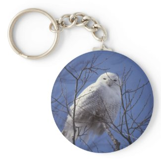 Snowy Owl Keychain keychain