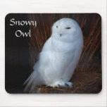 Snowy Owl - mousepad