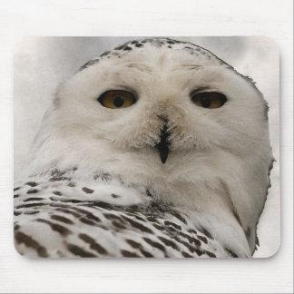 snowy owl mousepads