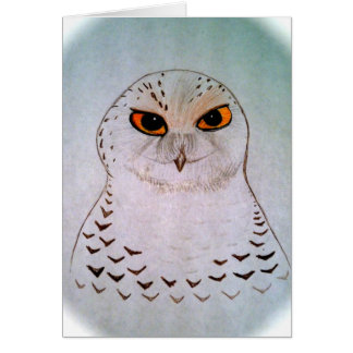 Snowy Owl Notecards Greeting Cards