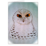 Snowy Owl Notecards Stationery Note Card