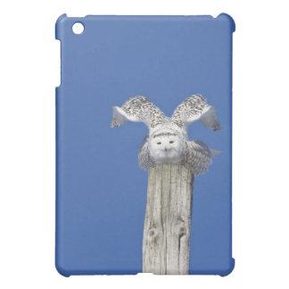 Snowy owl on top of a pole, preparing to take iPad mini cases