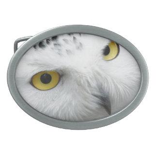 Snowy Owl Oval Belt Buckles