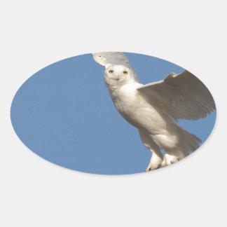 Snowy Owl Oval Sticker