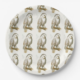 Snowy Owl Paper Plate
