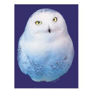 Snowy Owl Pattern Postcard