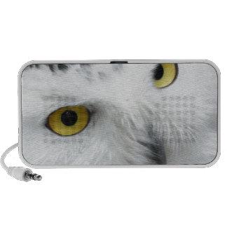 Snowy Owl PC Speakers