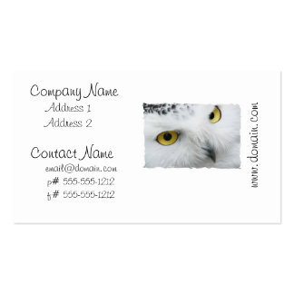 Snowy Owl Photo Business Cards