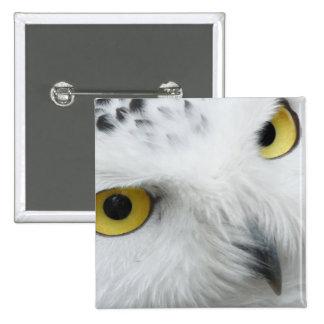 Snowy Owl Photo Button