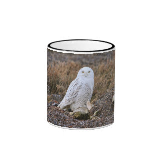Snowy Owl Photo Mugs