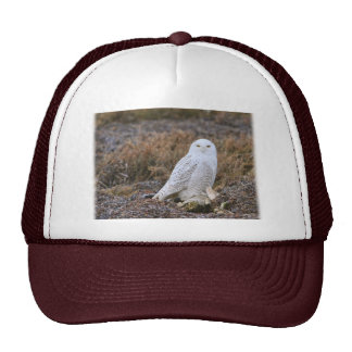 Snowy Owl Photo Trucker Hat