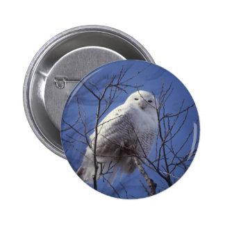 Snowy Owl Pins