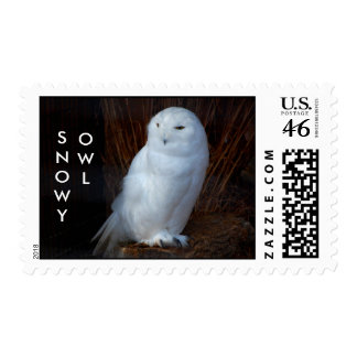 SNOWY OWL - postage stamps
