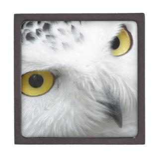 Snowy Owl Premium Keepsake Box