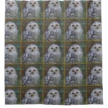 Snowy Owl R1, Schnee-Eule Shower Curtain