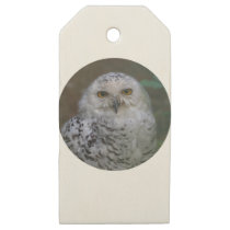 Snowy Owl, Schnee-Eule 02_rd Wooden Gift Tags