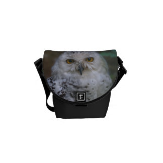 Snowy Owl, Schnee-Eule Courier Bag