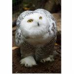 Snowy owl sculpture standing photo sculpture