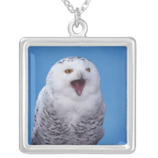 snowy owl silver plated necklace