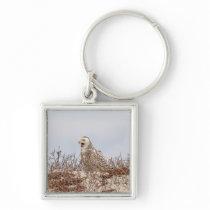 Snowy owl sitting on the beach keychain