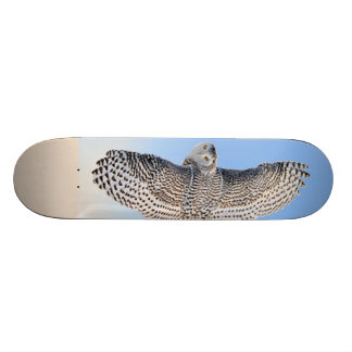 Snowy Owl Skateboard