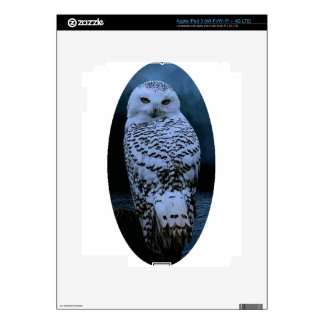 Snowy owl skins for iPad 3