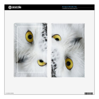Snowy Owl Skins For Kindle Fire