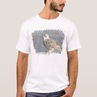 Snowy owl standing on ice, a mouse's tail T-Shirt