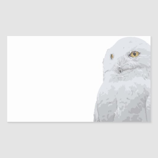 Snowy Owl Rectangle Stickers