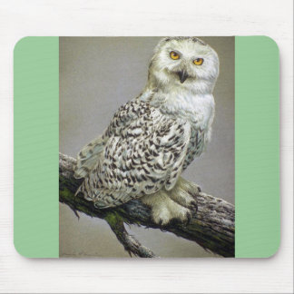 Snowy Owl study Mouse Pad