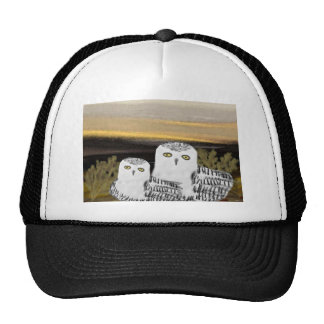Snowy Owl Sunrise Hats