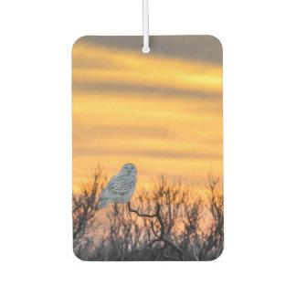 Snowy Owl Sunset Air Freshener