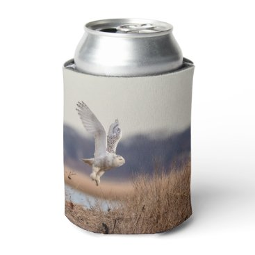Snowy owl taking off can cooler