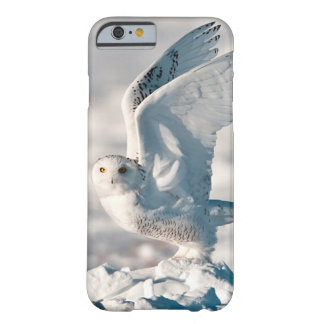 Snowy Owl taking off from snow Barely There iPhone 6 Case