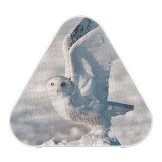Snowy Owl taking off from snow Bluetooth Speaker