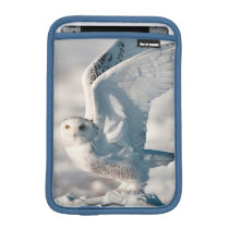 Snowy Owl taking off from snow iPad Mini Sleeve