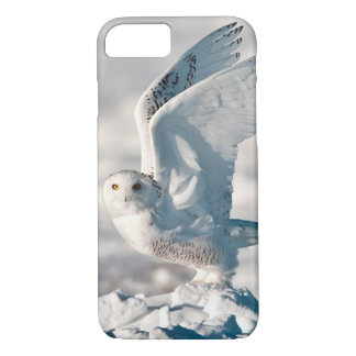 Snowy Owl taking off from snow iPhone 7 Case