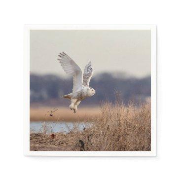 Snowy owl taking off napkin