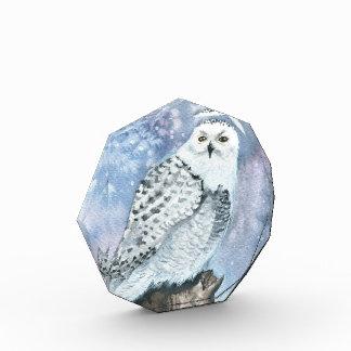 Snowy Owl Watercolor Art Acrylic Block Acrylic Award