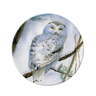 Snowy Owl watercolor illustration Porcelain Plate
