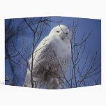 Snowy Owl - White Bird against a Sapphire Blue Sky Binder