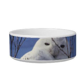 Snowy Owl - White Bird against a Sapphire Blue Sky Bowl