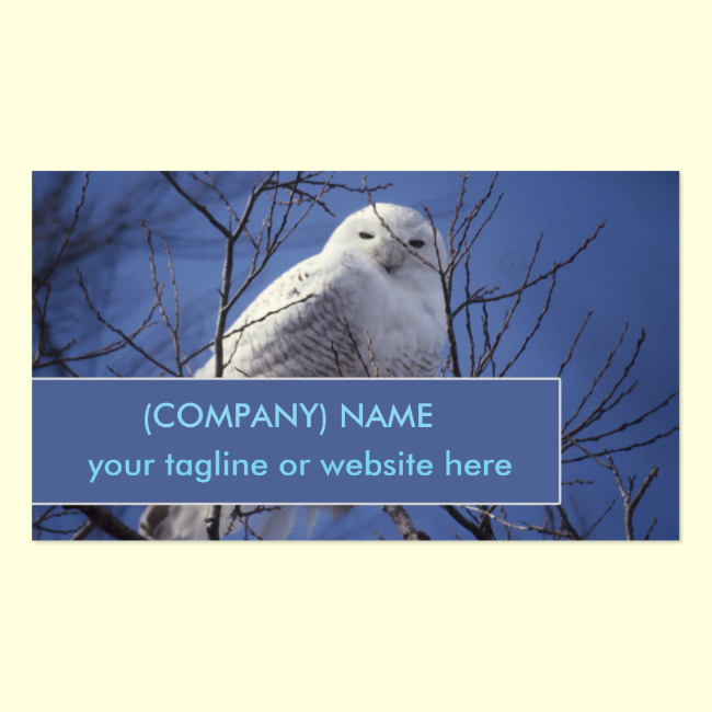Snowy Owl, White Bird against a Sapphire Blue Sky Double-Sided Standard Business Cards (Pack Of 100)