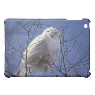 Snowy Owl - White Bird against a Sapphire Blue Sky Cover For The iPad Mini