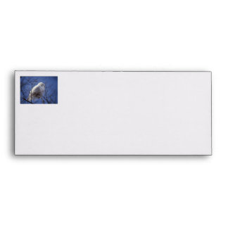 Snowy Owl - White Bird against a Sapphire Blue Sky Envelope