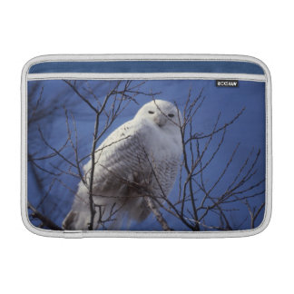 Snowy Owl - White Bird against a Sapphire Blue Sky Sleeves For MacBook Air