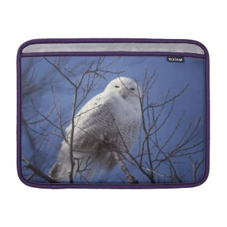 Snowy Owl - White Bird against a Sapphire Blue Sky Sleeves For MacBook Air
