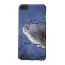 Snowy Owl - White Bird against a Sapphire Blue Sky iPod Touch (5th Generation) Cover