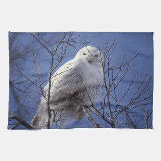Snowy Owl - White Bird against a Sapphire Blue Sky Towels