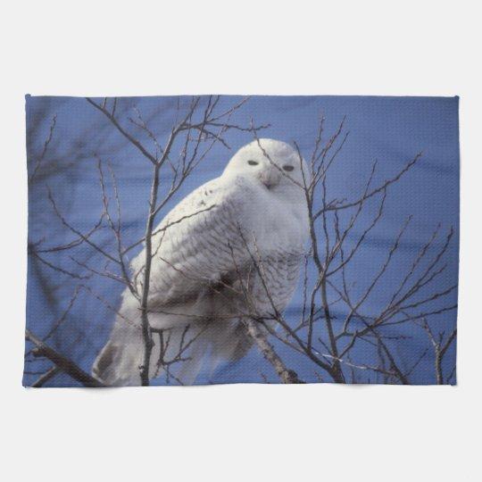 Snowy Owl - White Bird against a Sapphire Blue Sky Kitchen Towel